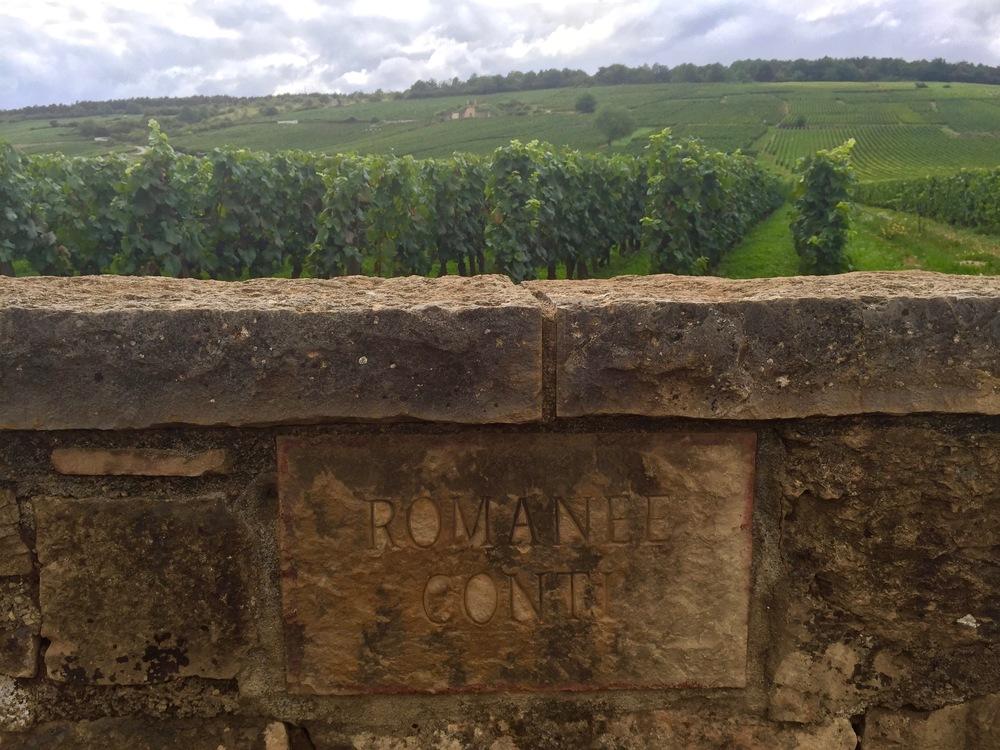 The famous Domaine de la Romanée-Conti