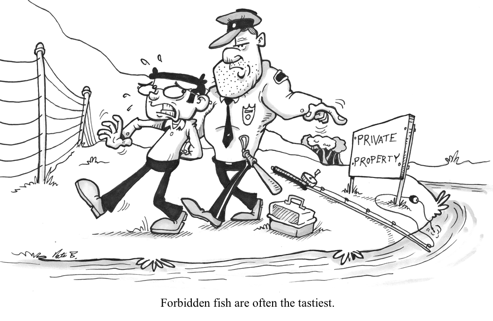 reelin_forbidden_fish.jpg