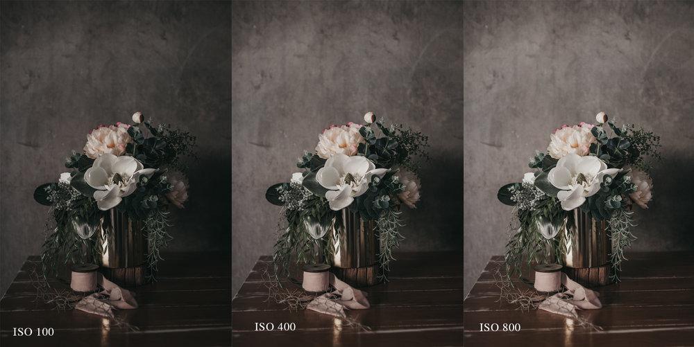 flowers iso.jpg