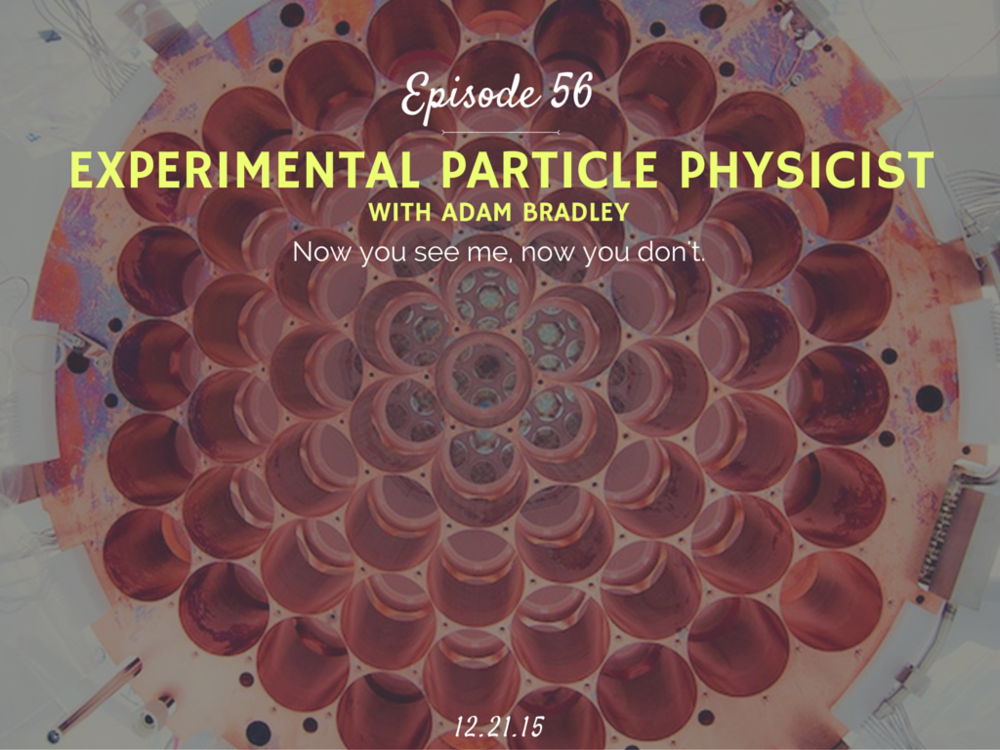 What is and how to become an experimental particle physics interview
