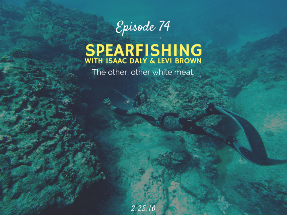 How to get started spearfishing interview with noob spearo