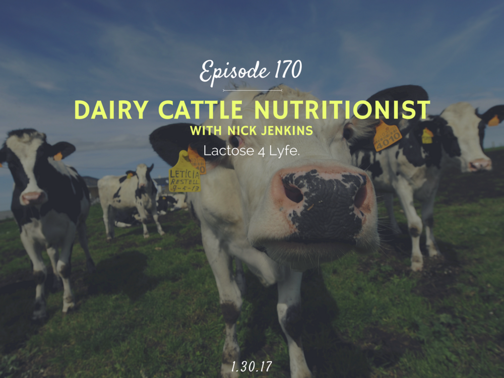 how to become a dairy cattle nutritionist interview