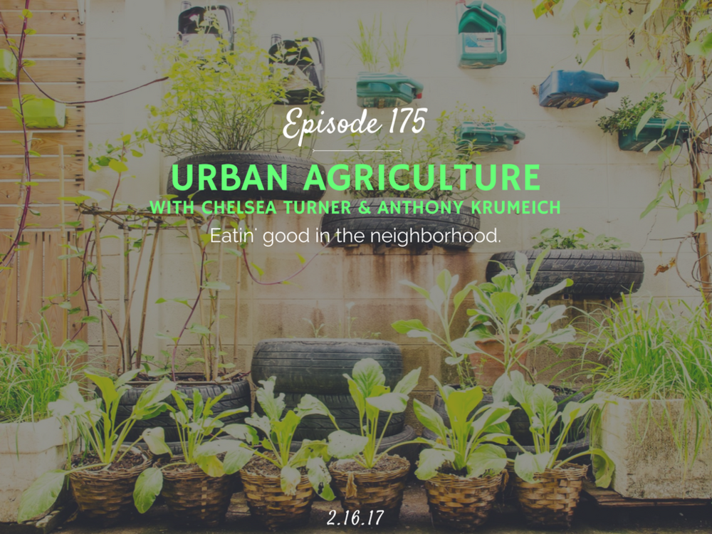 how to get started with urban agriculture interview