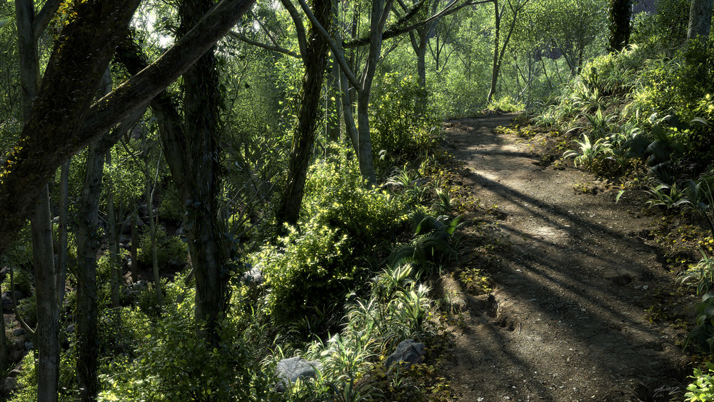 forestPath_4k.jpg