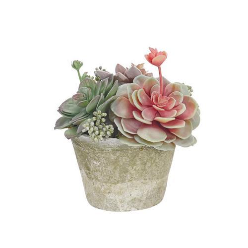 Faux-Succulent-1_500x500.jpg