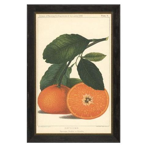 Orange Print - McGee & Co.
