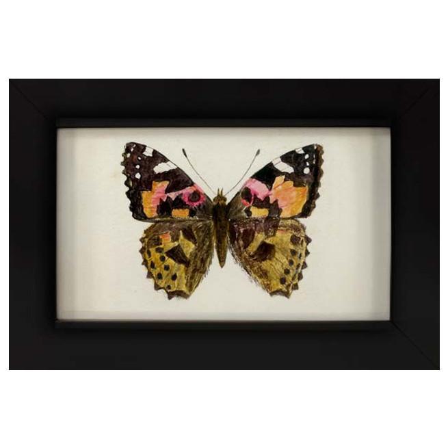 Birmingham_Butterfly_1.jpg