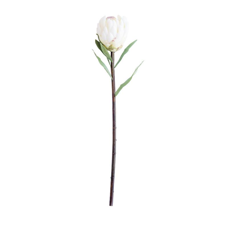 Faux_White_Protea_Stem_1.jpg