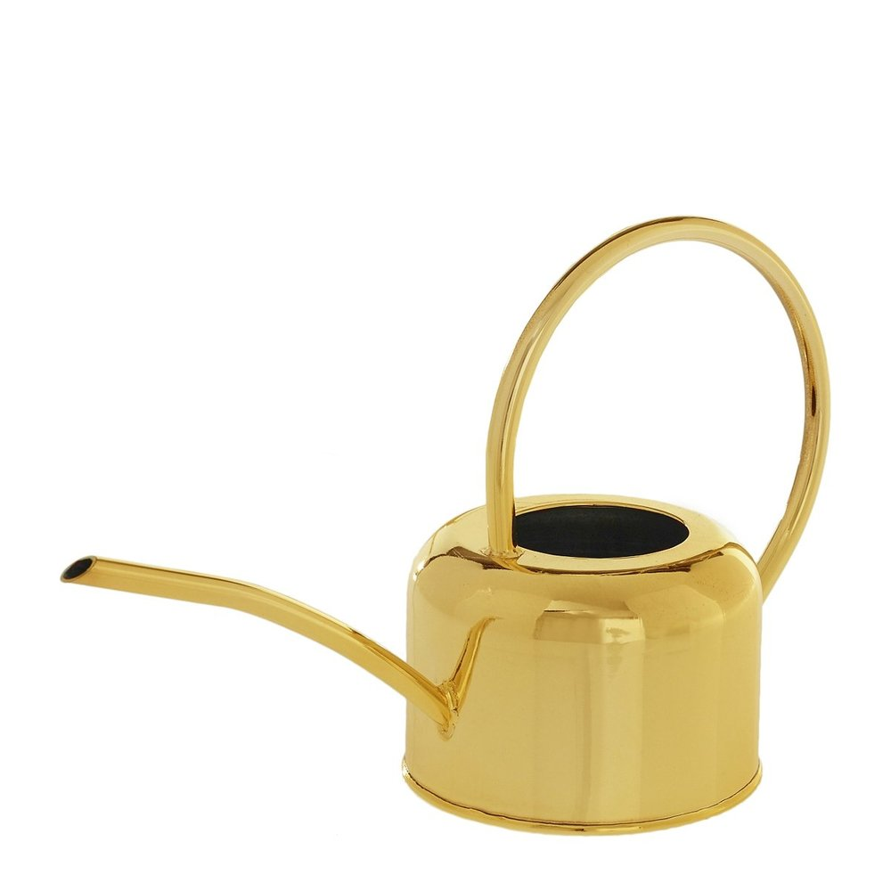 Gold_Watering_Can_1_ec27caa3-4905-4007-8ead-5c8417a99a09.jpg