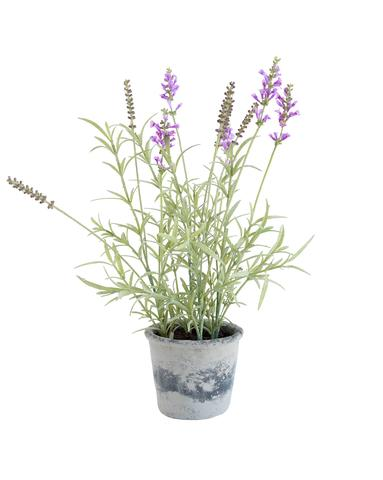 Faux_Lavender_Potted_Herb_1_480x480.jpg