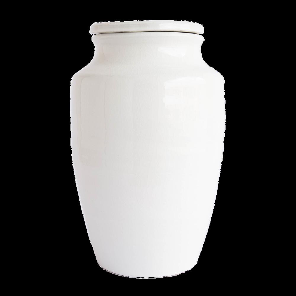 White_Terra-cotta_Jars_1.png