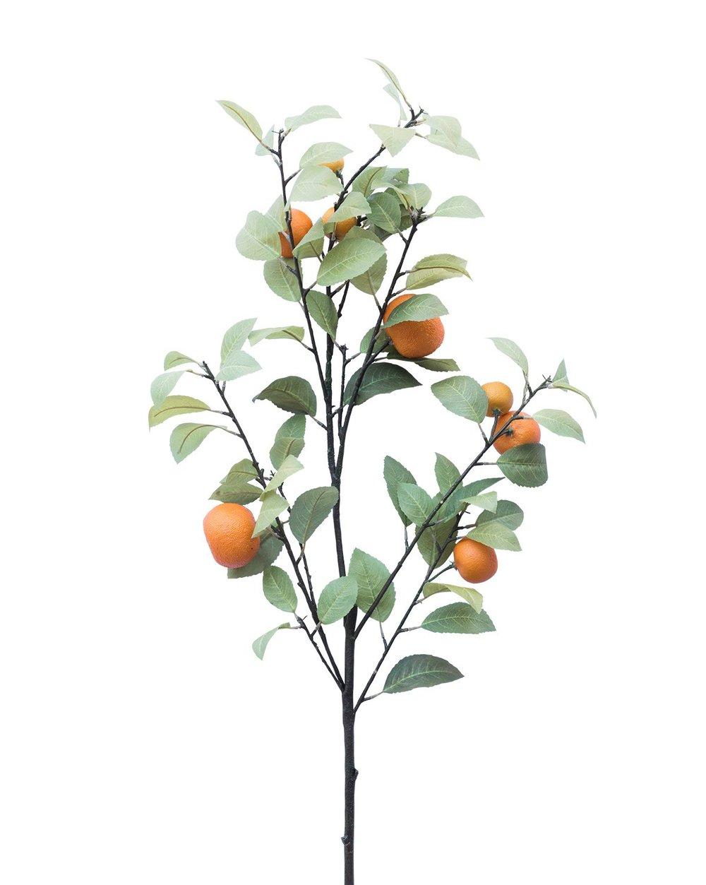 Faux_Tangerine_Branch_1.jpg