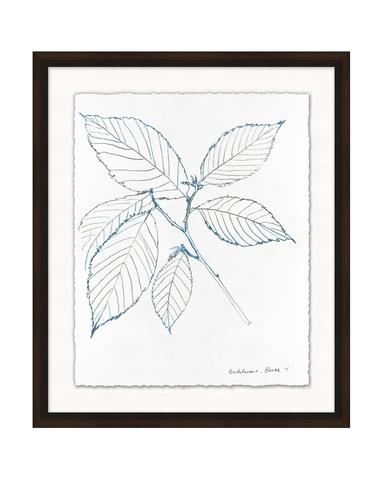 Blue_Leaf_Sketch_2_1_480x480.jpg