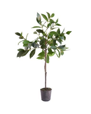 Faux_Bayleaf_Tree_Drop-In_1_480x480.jpg