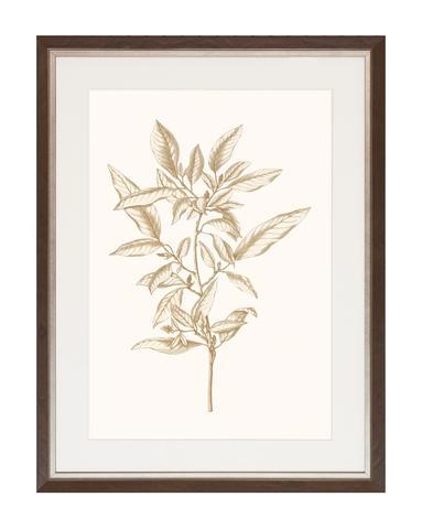 Sepia_Botanicals_3_1_480x480.jpg