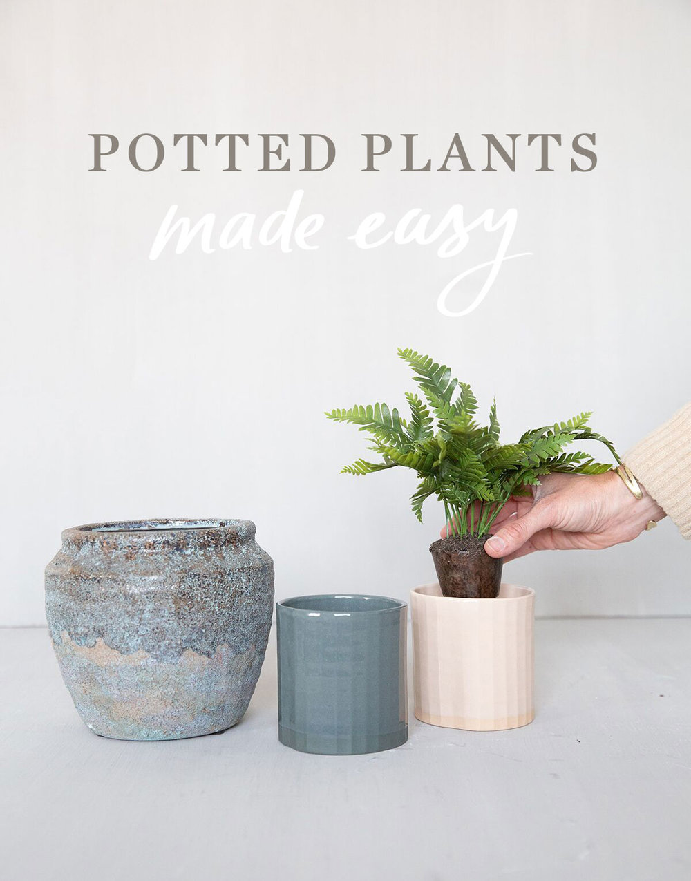 potted-plants.jpg