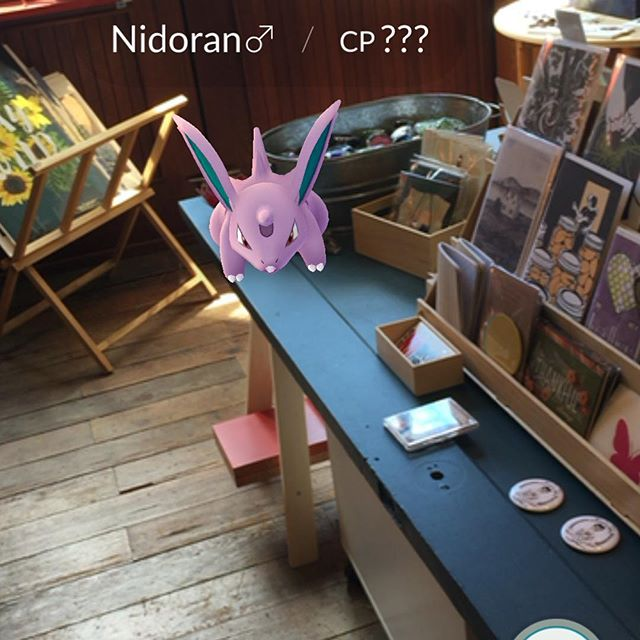 This guy wandered into the shop today. Of course the girls immediately caught him. #pokemongo #tookthekidstoworktoday