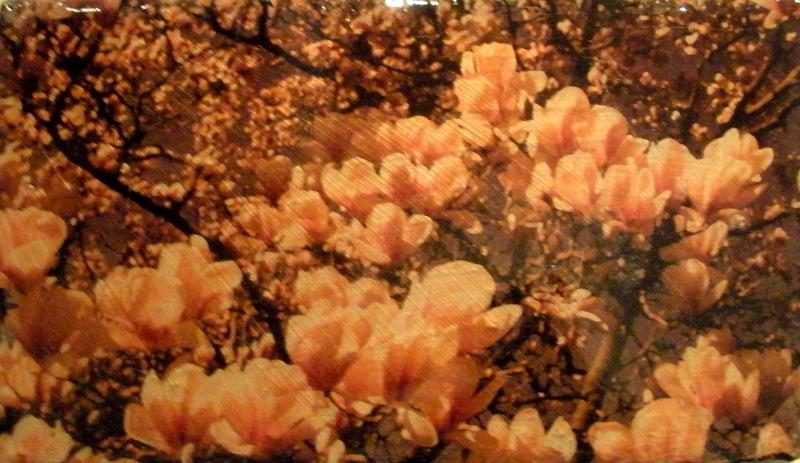 deroux_floral_untitled2.jpg