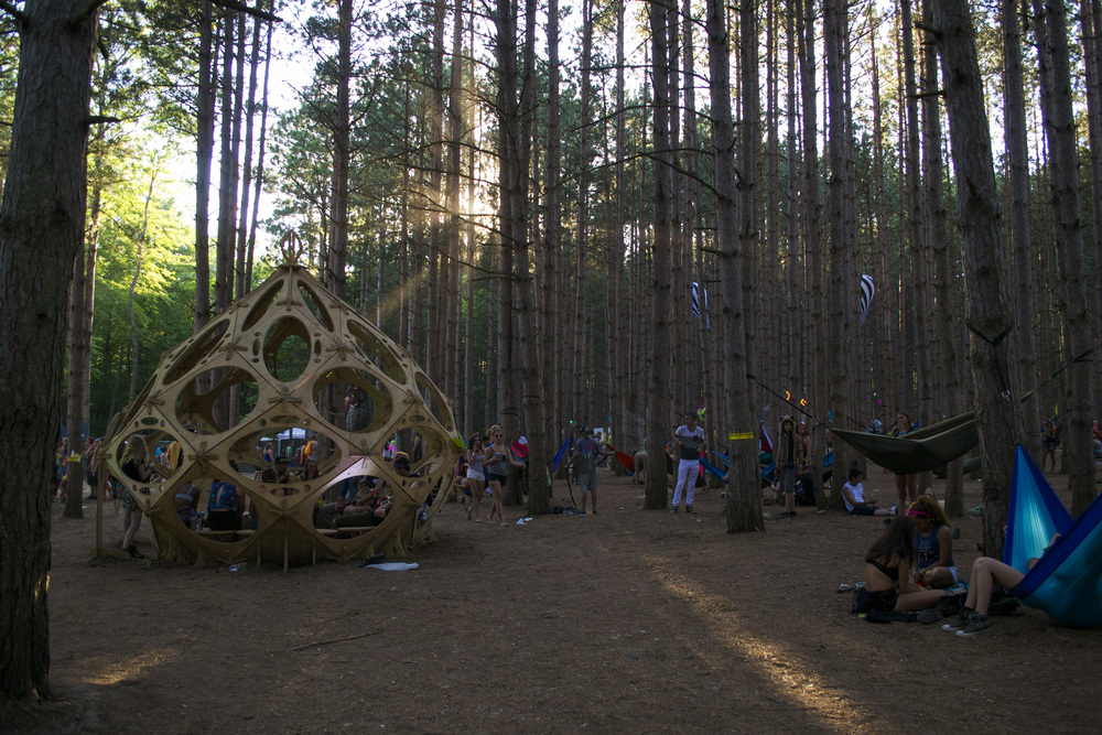 Electric Forest Edits_2.jpg