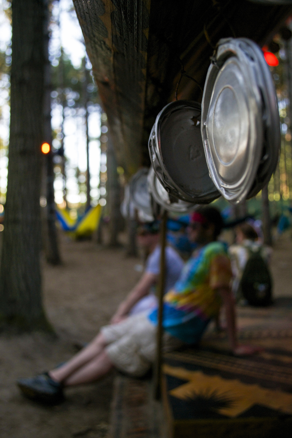 Electric Forest Edits_8.jpg
