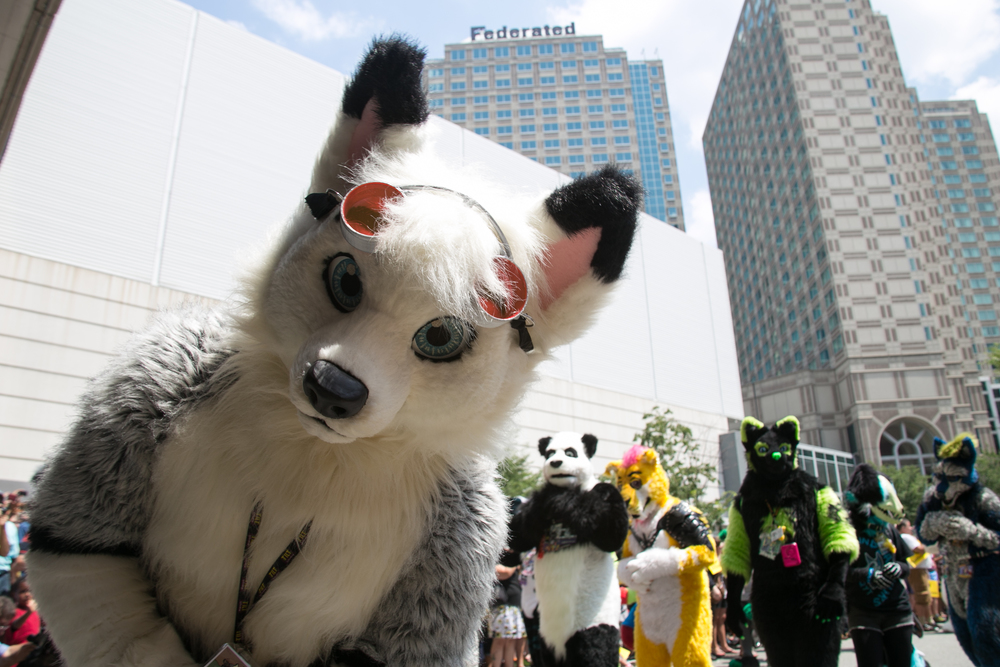 Anthrocon Finals-51.jpg