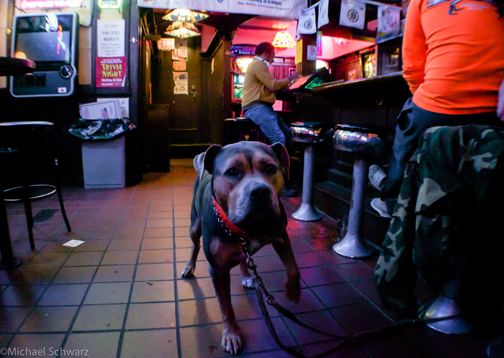 Dig Boston Bar Crawl Marty Final Shots-2.jpg