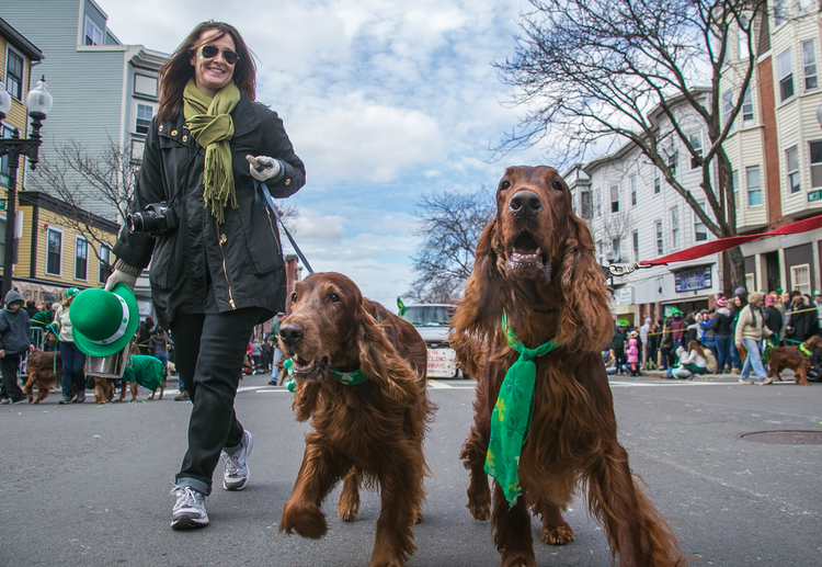 Saint Patricks Day Parade - South Boston, MA