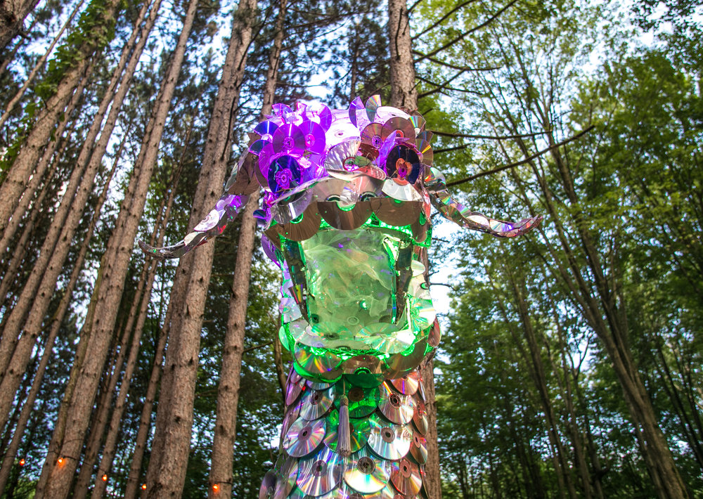 Electric Forest 2017 - Mike Schwarz_-17.jpg