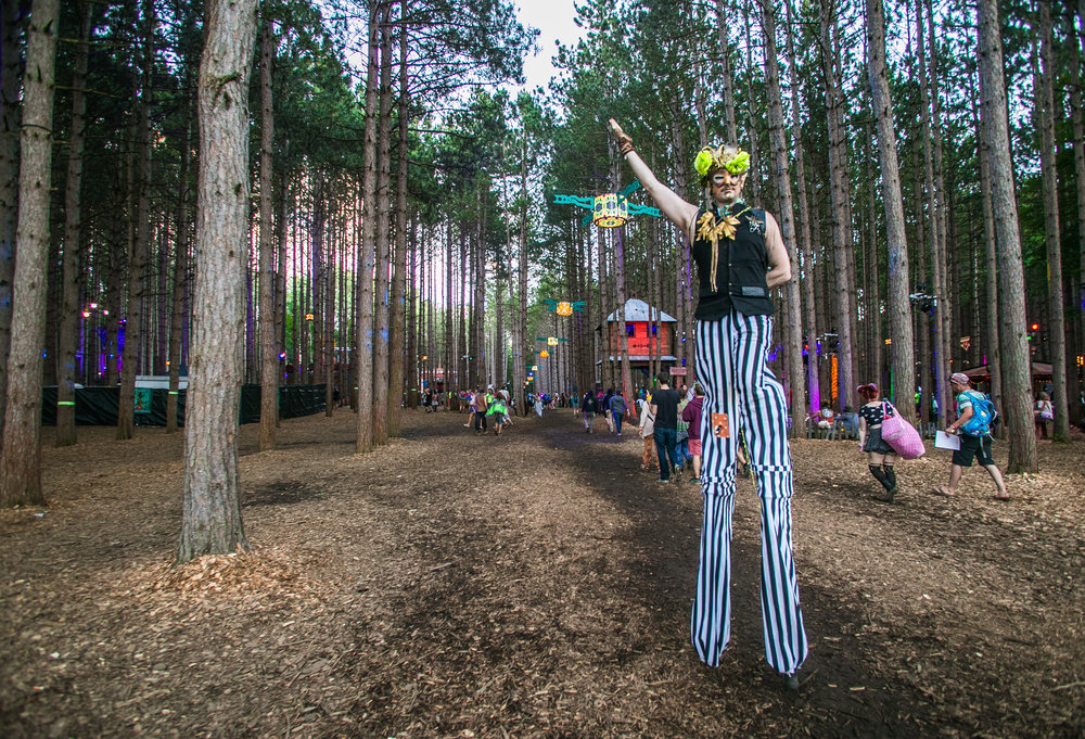 Electric Forest 2017 - Mike Schwarz_-18.jpg