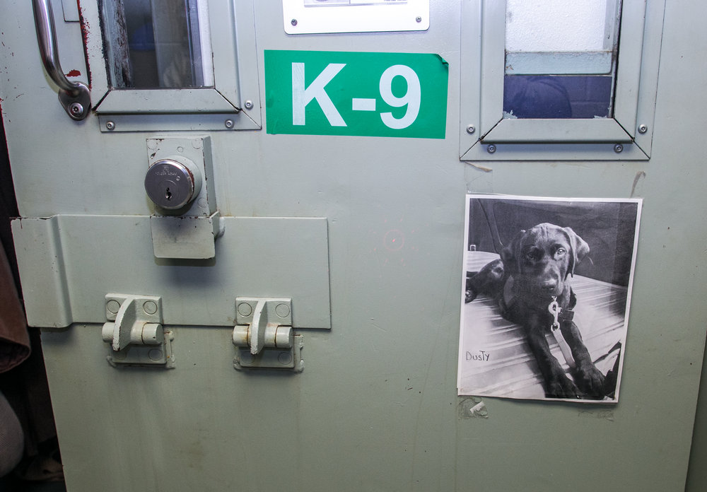 Nike's photo taped to Ralph's door below a green K-9 designation sign.