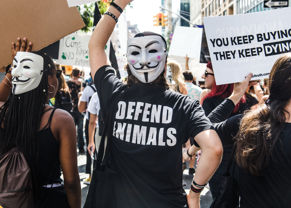Animal Rights March '18 Finals - Mike Schwarz-4.jpg
