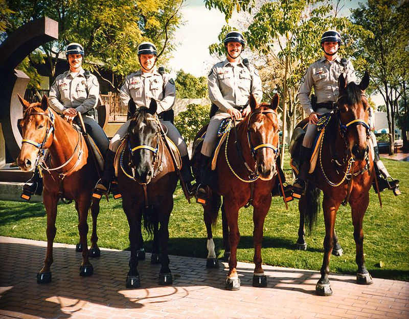 "Mounted patrols use EasyCare Hoof Boots  www.easycareinc.com .....see  www.liberatedhorsemanship.com  under ""free articles"" for a beautiful story from Bruce Nock on one of the first mounted patrols to go barefoot."