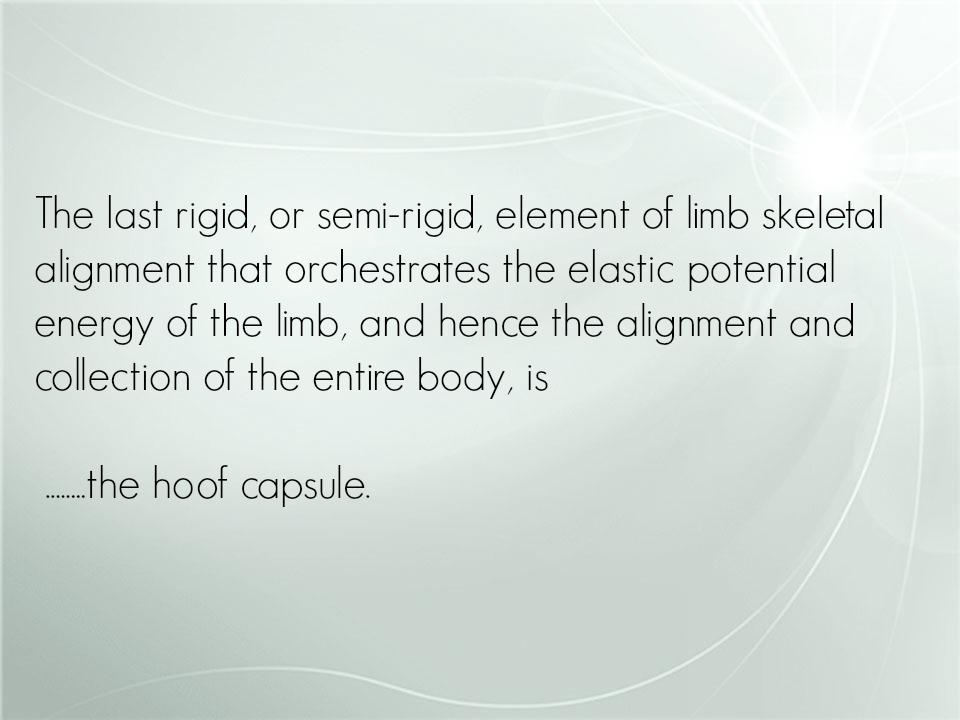 hoof capsule1.jpg