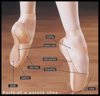 ballet-shoes-and-pointe-shoes.jpg