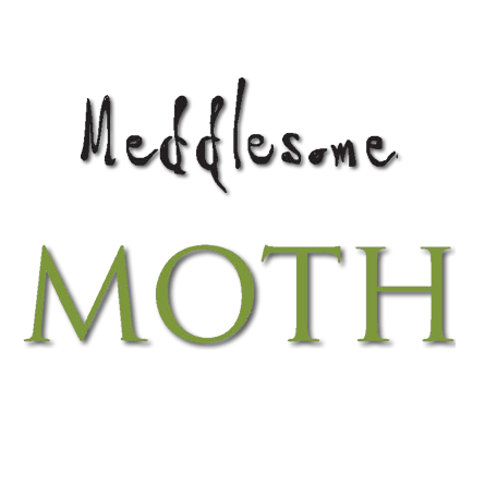 Meddlesome Moth.png