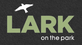 logo_lark.png
