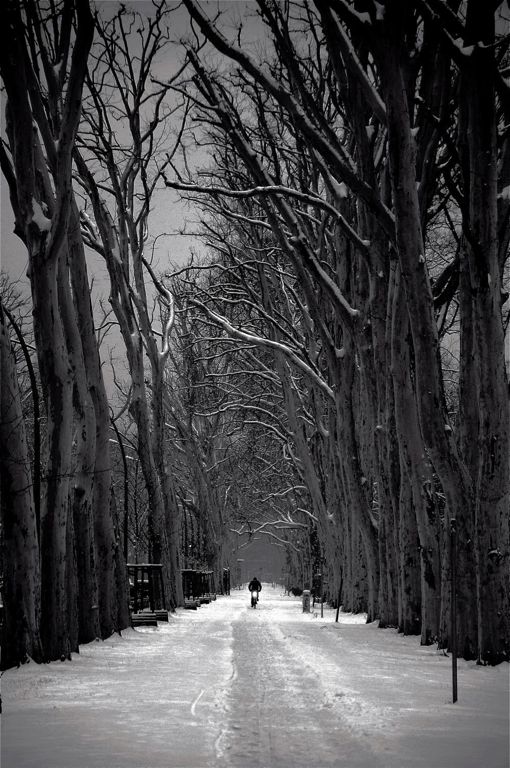 white+berlin.jpg