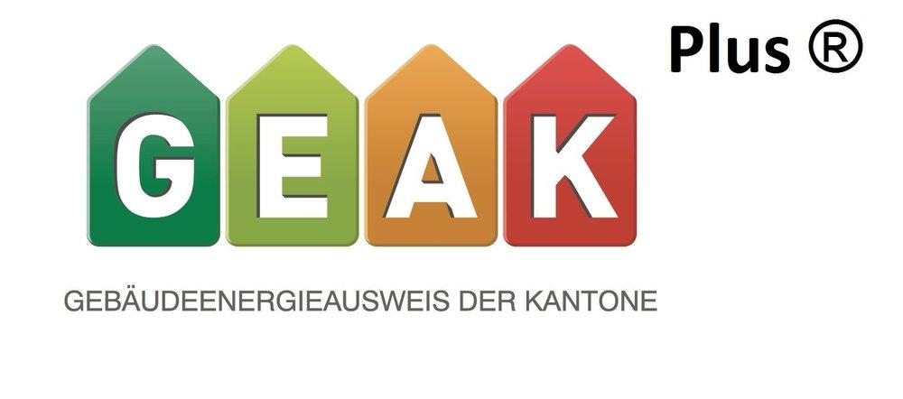 Logo_Geak Plus.jpg