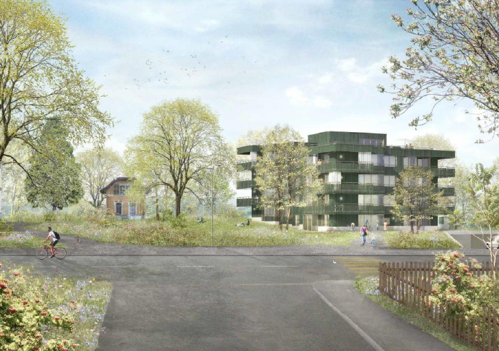 Visualisierung:Mirlo Urban Architekten