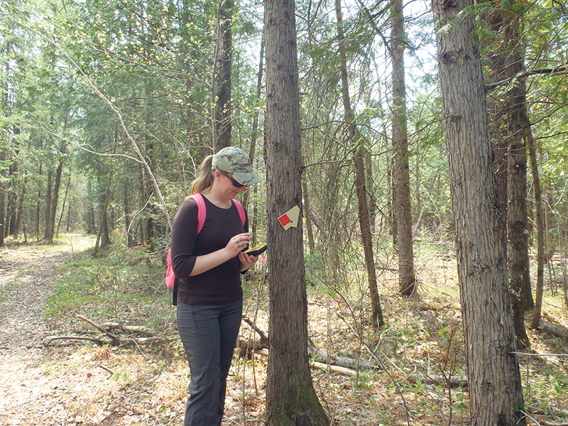 Intern Katie Cook assists with easement monitoring. NCC photo
