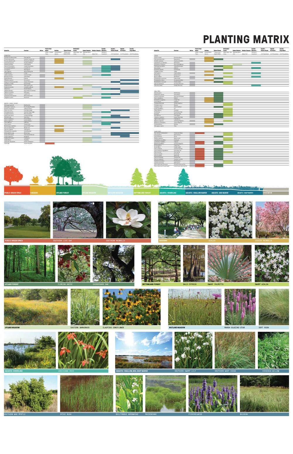 Lakes Final Master Plan_Page_21.jpg