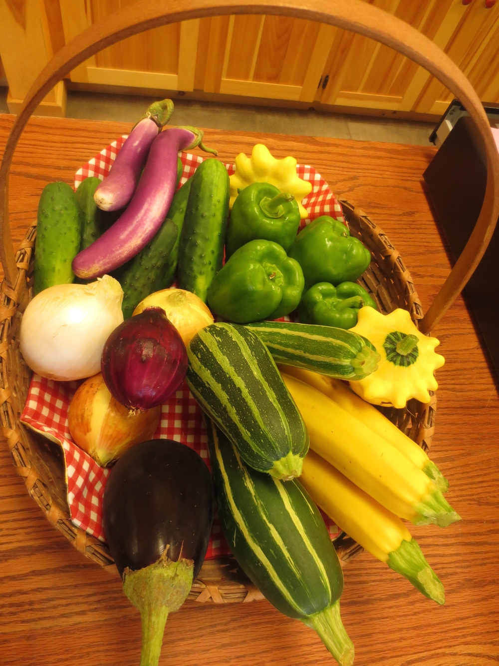 Basket of Fresh Produce : Eggplant, Zucchini, Onions, Peppers, Cucumbers, and Summer Squash