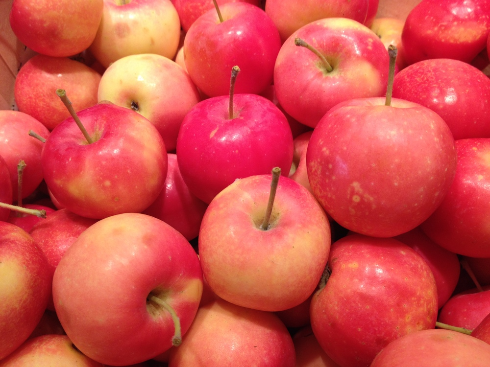 Virginia Crab Apples Are Fresh & In Season