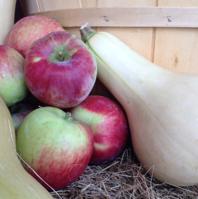 We have many varieties of apples and winter squash in our farmstand right now!