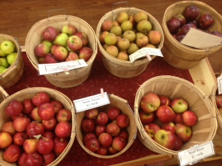 Apples, apples and apples are available in the farmstand this week!