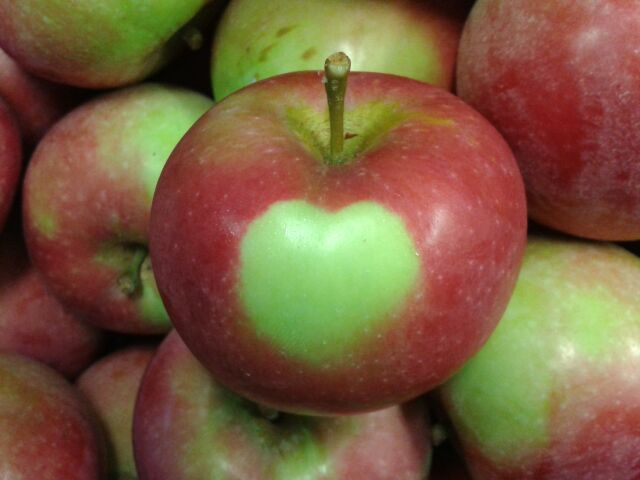 We Love Our Apples Here At Pietree!