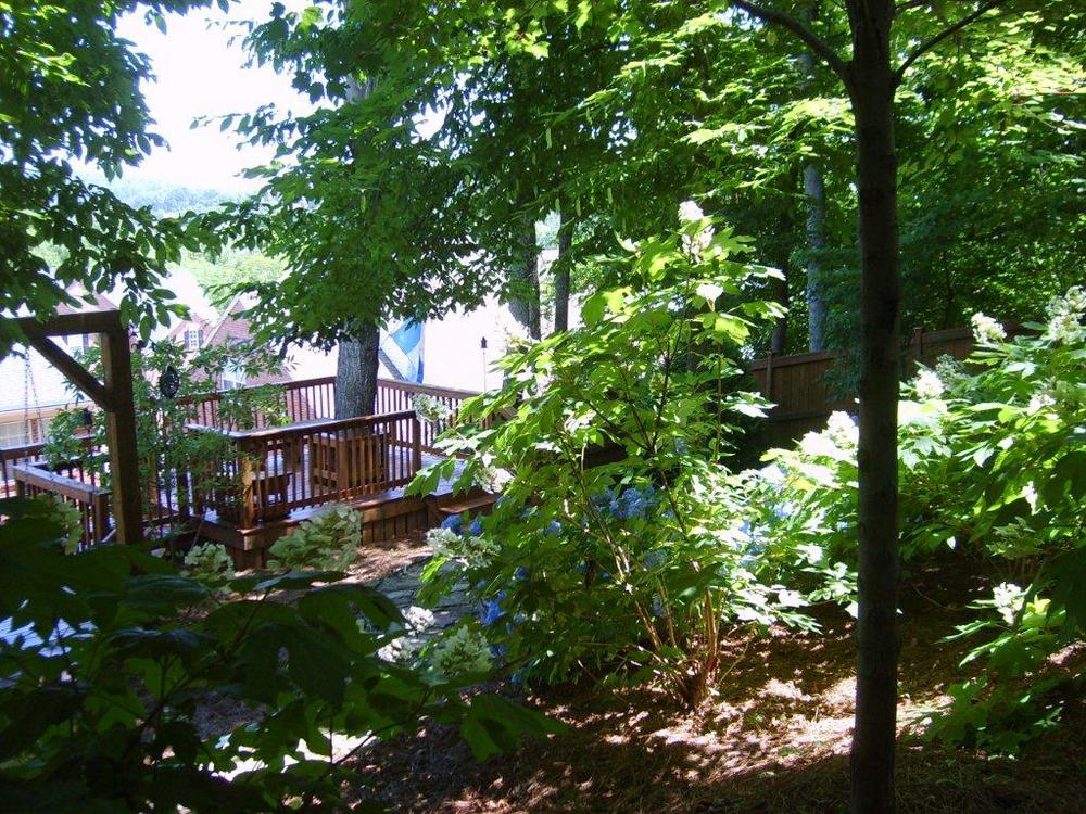 woodland plantings.jpg