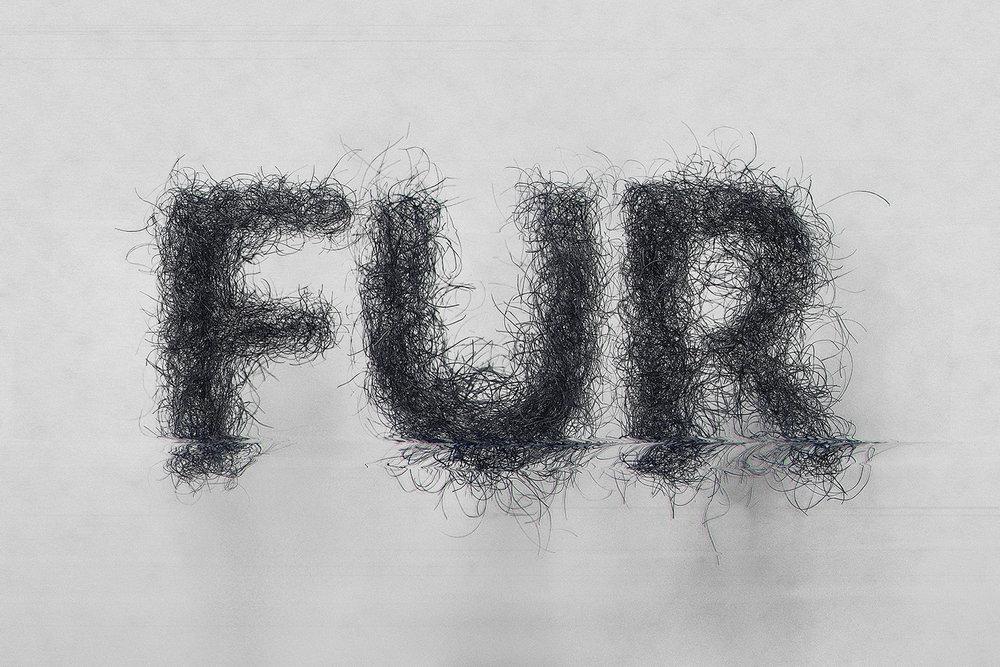 florianlevy_2.0-Fur