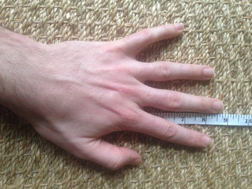 Length of palm