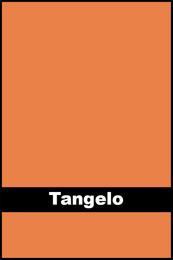 Tangelo.jpg